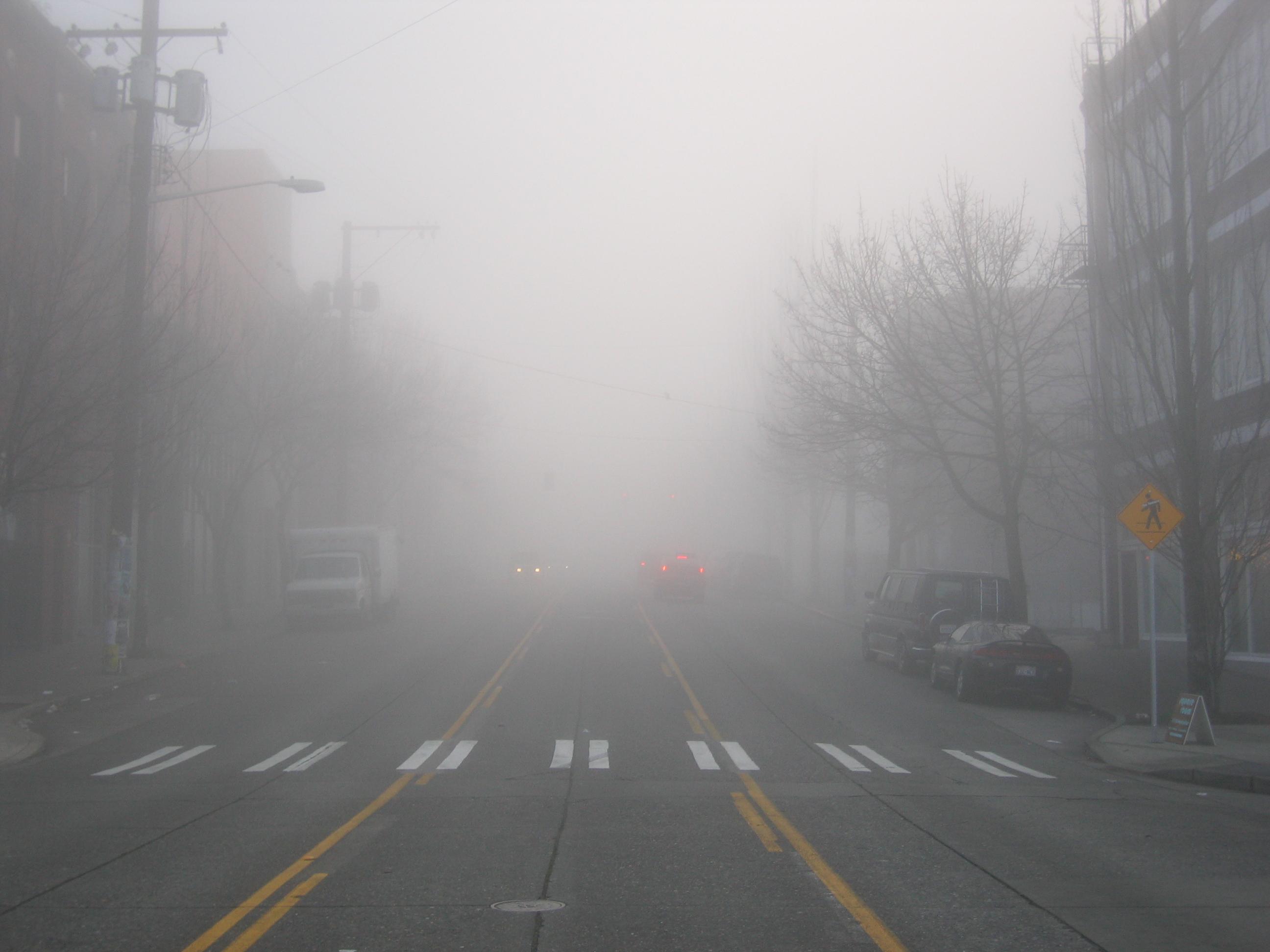 dense-fog